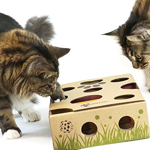Cat Amazing – Best Cat Toy Ever! Interactive Treat Maze & Puzzle Feeder for Cats 5