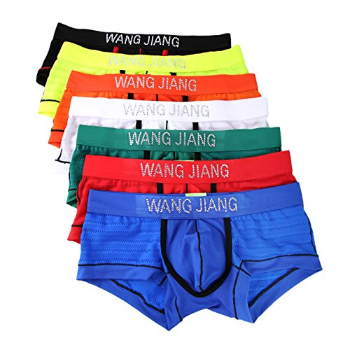SilkWorld Mens Transparent Boxer Brief
