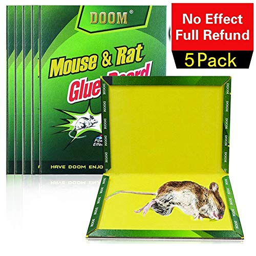 TILLAIN Mice/Rat Glue Trap, 5 Packs Peanut Butter Scented Rat Glue Boards, Indoor Outdoor High Strength Mouse Traps, Let Family and Friends Pets have a Warm Home away From Mice and Harmful Animals