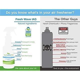 Fresh Wave IAQ Commercial Odor Eliminating Air & Surface Spray, 32 fl. oz, w/sprayer