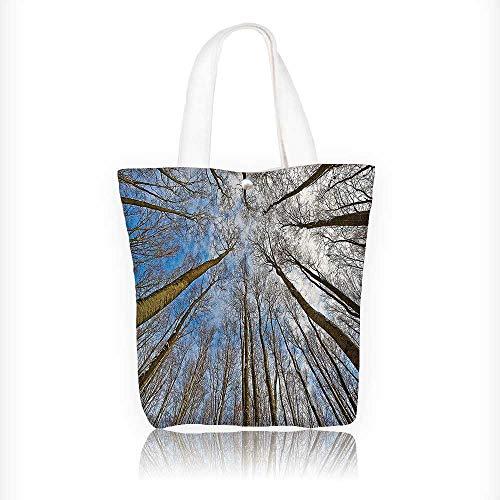 Reusable Cotton Canvas Zipper bag Skyward of Leafless Twiggy Tree Trunk Cloudy Morning Light Blue Brown Tote Laptop Beach Handbags W16.5xH14xD7 INCH