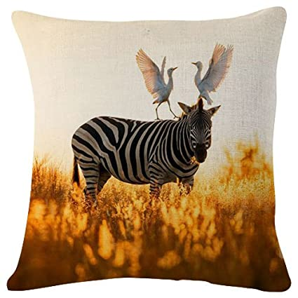 Amazing Amazon Com South African Egrets Zebra In Rietvlei Nature Onthecornerstone Fun Painted Chair Ideas Images Onthecornerstoneorg