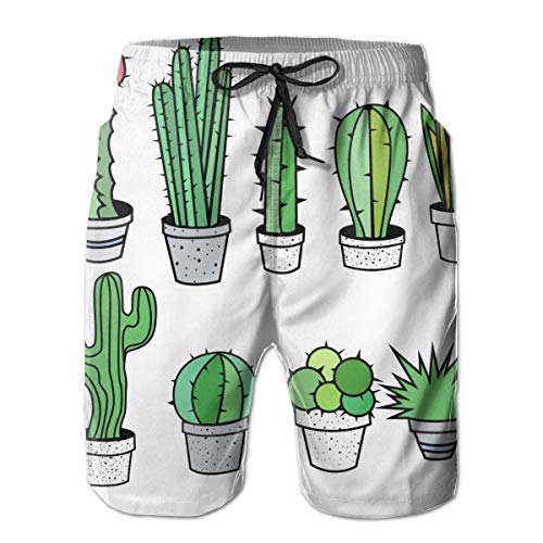 Fly Teenager Cacti Cactus Succulent Men's Swim Trunks Quick Dry with Mesh Lining 3 Pockets