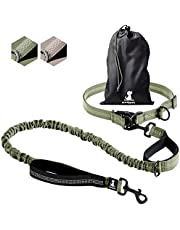 SparklyPets Hands-Free Dog Leash for Medium and Large Dogs – Professional Harness with Reflective Stitches for Training, Walking, Jogging and Running Your Pet (Range Green)