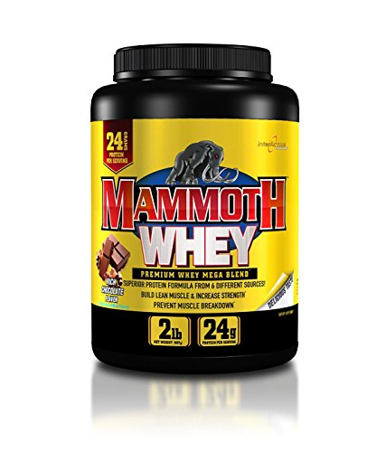 Mammoth Supplements Protein Powder Chocolate product image