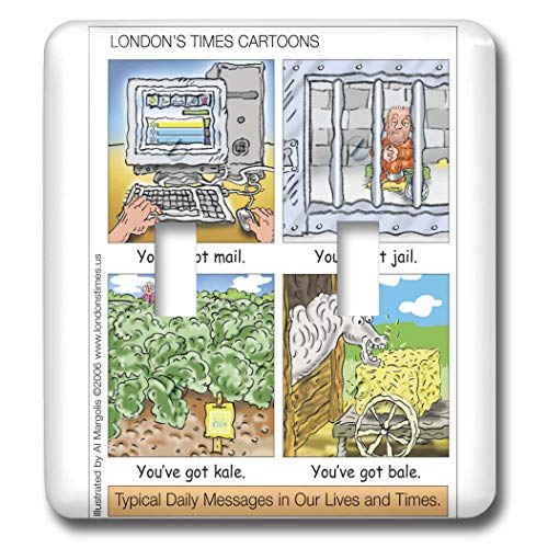 3dRose Londons Times Funny Silly Wordplay Cartoons - You ve Got Mail, Jail, Kale, and Bale - Light Switch Covers - double toggle switch (lsp_3434_2)