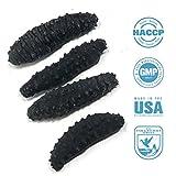 SB Organics Black Pin Small - Wild Caught Sea Cucumber Dried All Natural Nutritious - 8 oz.