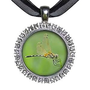 GiftJewelryShop placa de plata hermoso lindo libélula encanto de cristal blanco colgante de collar