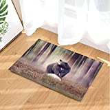 GoHeBe Foggy Forest Animals Decor Black Bear on a Rock in the Woods Bath Rugs Non-Slip Doormat Floor Entryways Indoor Front Door Mat Kids Bath Mat 15.7x23.6in Bathroom Accessories