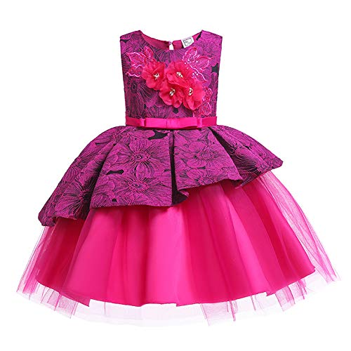 (Lace Flower Girl Pageant Holiday Dress Girls Elegant Tulle Backless Wedding Princess Ball Gown Sleeveless Party Dresses Special Occasion Dresses Age 2-3 Year (Rose,)