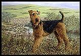 Caroline's Treasures HMHE0245JMAT Airedale Terrier The Kings Country Indoor or Outdoor Mat, 24'' x 36'', Multicolor