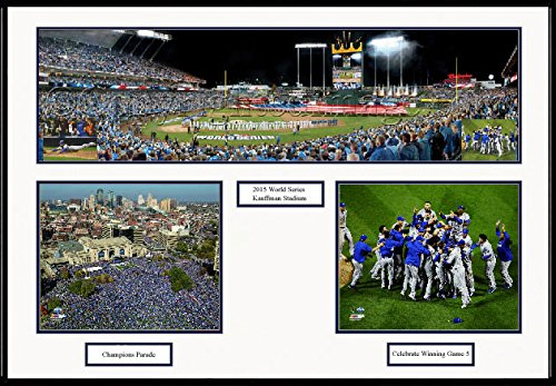 2015 Champions Team Deluxe Framed Collage Panoramic Picture Photo #2503