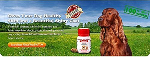 2 Pack Vetz Petz Antinol Extract 100% For Dogs Anti-inflammatory and Pain Relief 60 Tablet.