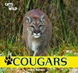 Cougars, Henry Randall, 1448825164