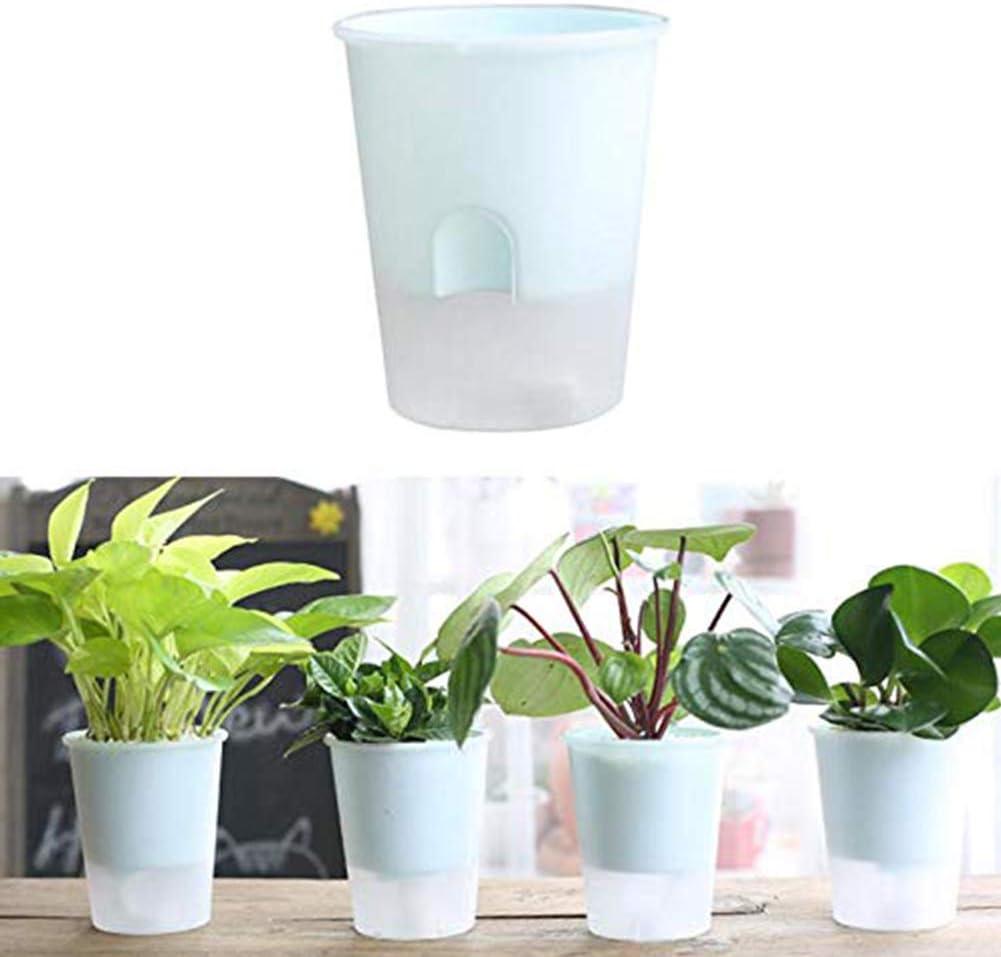 IWILCS Pulv/érisateur de plantes en verre transparent avec pompe d/écorative
