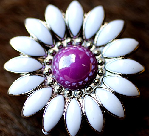 TackRus Lot of 4 Conchos Concho Rhinestone Horse Saddle Western Daisy Floral Purple ()