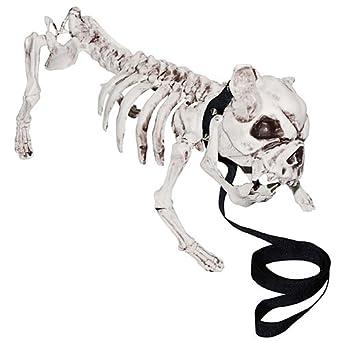 Amazon Com Shindigz Skeleton Dog Industrial Scientific
