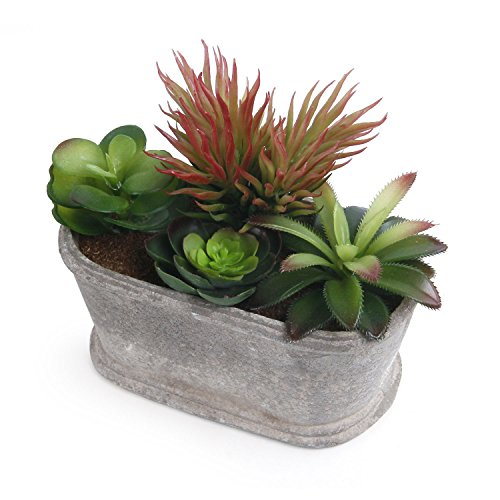Artificial Succulent Plants Series Plastic Decorative Grass Shape 4 of T4U, Pack of 1 by T4U
