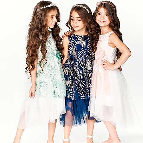 BRWCF Kid Dress For Girl 2017 Embroidery Summer Dresses Party Wedding Princess Dress 3-10Y (3T, blue)