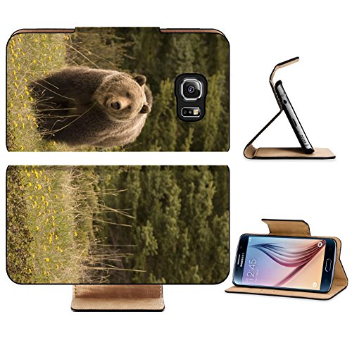 luxlady-premium-samsung-galaxy-s6-edge-flip-pu-leather-wallet-case-image-id-2249826-large-grizzly-sh