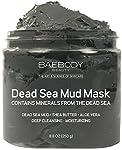 Baebody Dead Sea Mud Mask for Women, 8.8 Ounce