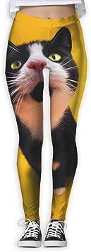 Jack16 Pantalones Divertidos para Gatos, Yoga, Entrenamiento, Capris, Leggins para Mujeres y niñas, Mujer, Large: Amazon.es: Deportes y aire libre