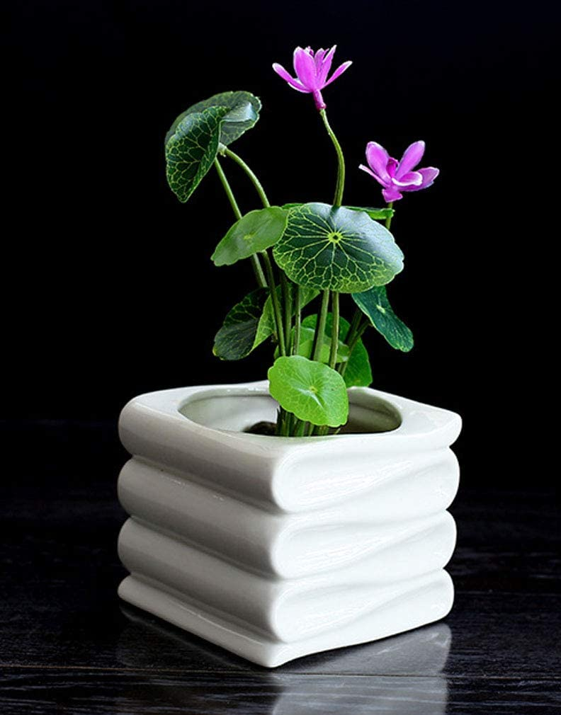 Modern Planter Ceramic Book Planter Pot Bonsai Pot Flower Pot Succulent Planter White