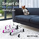 Nacome Robot Dog Toy,2.4G Remote Control RC Walking Electronic Pets Smart Dog Interactive Robot Dog Gift (Black)