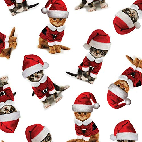 Wrapping Paper Flat Gift (Kitty Christmas Gift Wrapping Paper Flat Sheet - 24