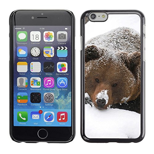 "Premio Sottile Slim Cassa Custodia Case Cover Shell // V00003388 grizzli dans la neige // Apple iPhone 6 6S 6G PLUS 5.5"""