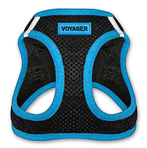 Best Pet Supplies Voyager - All Weather No Pull Step-in Mesh Dog Harness with Padded Vest for Puppy and Cats - Blue, Large