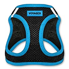 Voyager All Weather No Pull Step-in Mesh Dog Harness with Padded Vest, Best Pet Supplies, Small, Blue