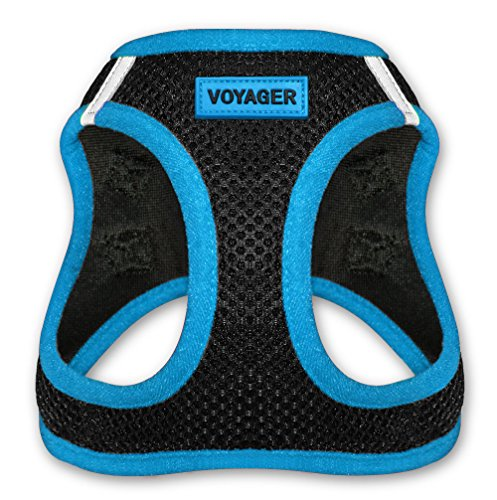 Voyager Step-In Air Dog Harness - All Weather Mesh, Step In Vest Harness for Small and Medium Dogs by Best Pet Supplies - Blue, Small (Chest: 14.5