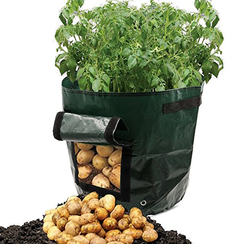 ASOON 2-Pack 7 Gallon Garden Potato Grow Bag Vegetables Planter Bags with Handles and Access Flap for Potato, Carrot & Onion (Potato Bag Grow)