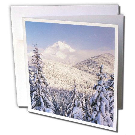 Winter, Mt Hood National Forest, Oregon, USA - Greeting Cards, 6 x 6 inches, set of 12 (gc_146231_2)