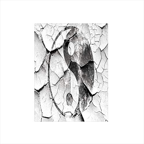 Decorative Privacy Window Film/Grunge Cracked Yin Yang Sign on the Wall Graphic Art Union Asian Zen Design/No-Glue Self Static Cling for Home Bedroom Bathroom Kitchen Office Decor Black and ()