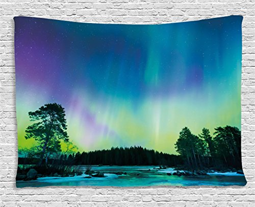 Northern Lights Tapestry by Ambesonne, Sky over Lake Surrounded Forest Woods Hemisphere Print, Wall Hanging for Bedroom Living Room Dorm, 80 W X 60 L Inches, Violet Blue Lime Green - Green Purple Lime