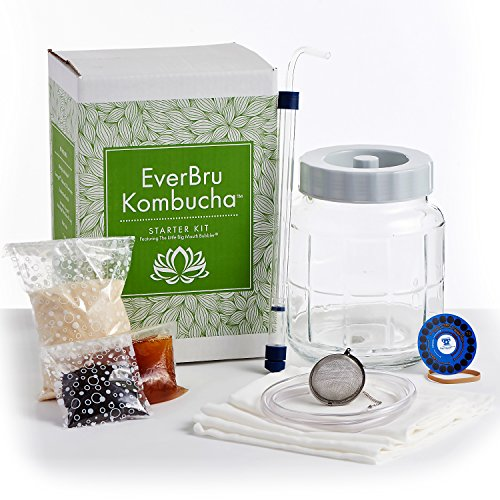 Everbru Kombucha Brewing Starter Kit With Scoby & Glass Fermenter Jar Equipment For Making 1 Gallon Batches At Home by Northern Brewer