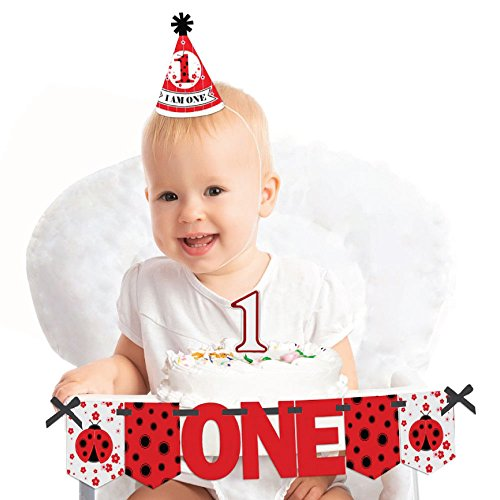(Big Dot of Happiness Modern Ladybug 1st Birthday - First Birthday Girl Smash Cake Decorating Kit - High Chair Decorations)