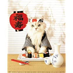 Sushi Cat Japanese Cute Funny Kitten Wall Decor Art Print Poster (16x20)
