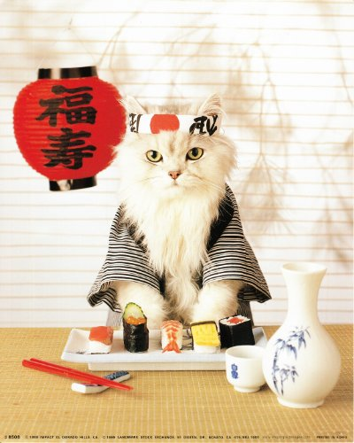 Sushi Cat Wall Decor Japanese Cute Funny Kitten Art Print Poster (16x20)