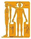 Linograph Male Human Figure Symbols Drafting