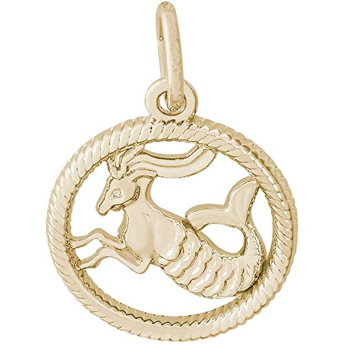 Rembrandt Charms Capricorn Charm, Gold Plated Silver (Plated Capricorn Gold Charm)