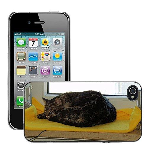Bild Hart Handy Schwarz Schutz Case Cover Schale Etui // M00133582 Hangover Makrele Schlafen // Apple iPhone 4 4S 4G