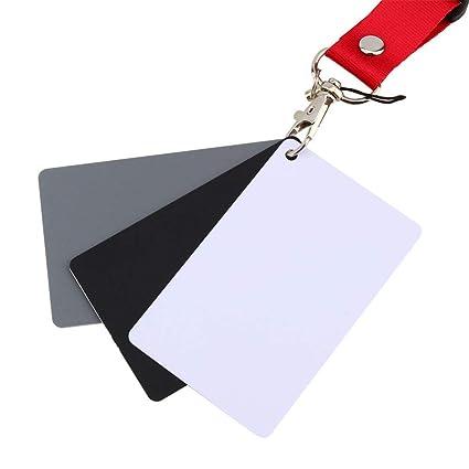 Tarjeta gris Tarjeta de balance de blancos Tarjeta de ...