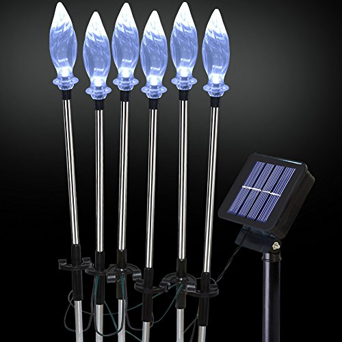 Beautiful garden solar lights!