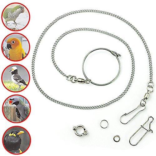 ebamaz Pet Bird Leash Parrot Foot Chain Stainless Steel 304 Anklet Ring (Model 7, 6.5mm) ()