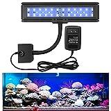 LED Aquarium Light, 13w Fish Tank Light, Blue Review and Comparison