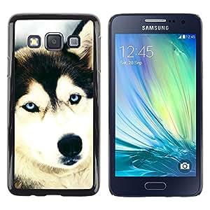 TopCaseStore / la caja del caucho duro de la cubierta de protección de la piel - Siberian Husky Alaskan Malamute Dog - Samsung Galaxy A3 SM-A300