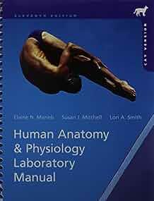 amazon com human anatomy   physiology laboratory manual human anatomy laboratory manual with cat dissections 7th edition human anatomy laboratory manual with cat dissections 8th edition pdf
